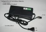 Ladegerät 48 Volt Gebläsekühlung 1,8 Ah 18 mm Stecker